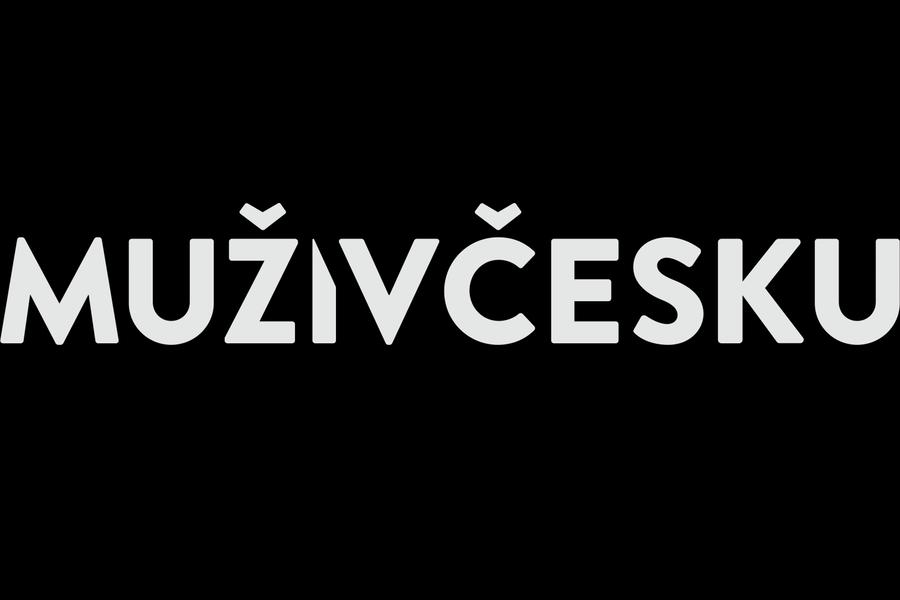 Muži v Česku